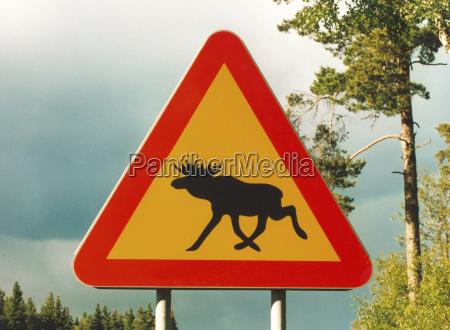 senyal conducir info peligro ir estrategia