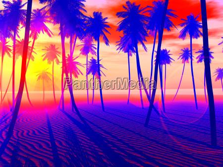 praia pop art