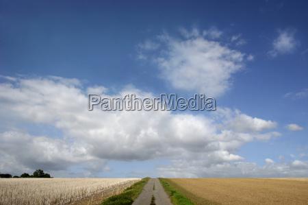projeto horizonte agricultura campos ecologia caminho