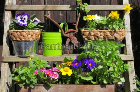 decoracoes de jardim