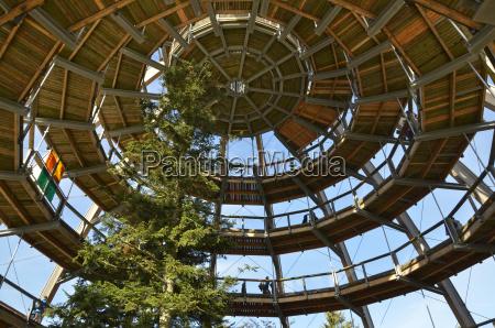 baumwipfelpfad bayerischer wald bayerischer bayern tourismus