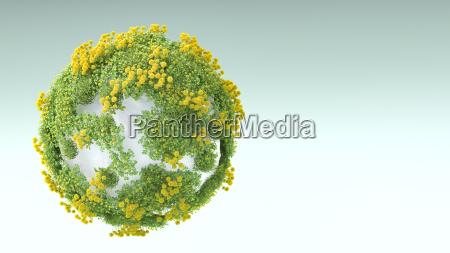 ambiente pedra flor planta lindas flores