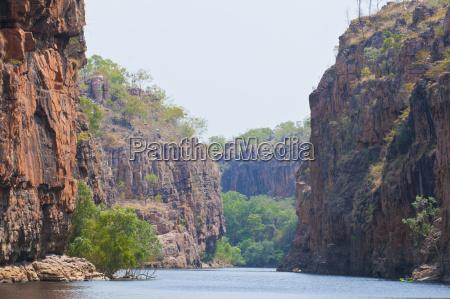 passeio viajar cor arvore rocha australia
