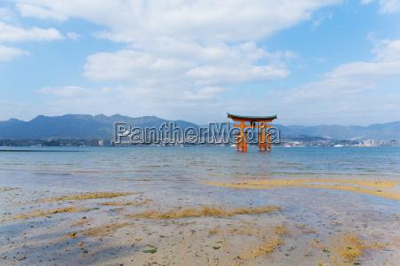 torii in itsukushima shine